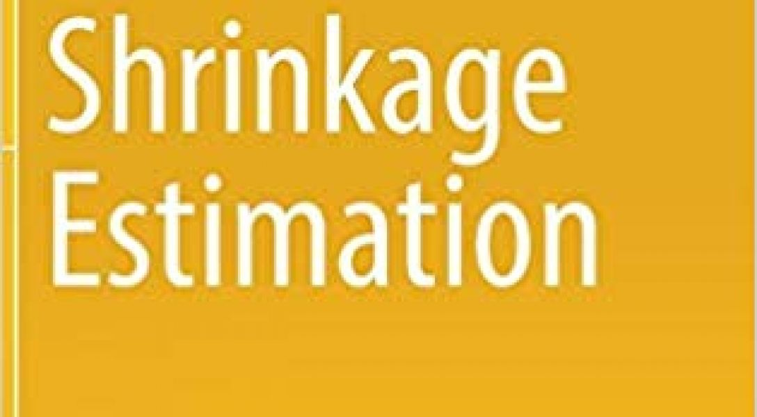 "Cover of the book ""Shrinkage Estimation"""